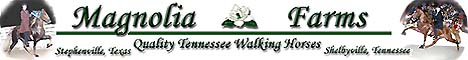 Magnolia Farms in Texas and Tennessee - For top quality Tennessee Walking Horses